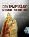 The Art and Science of Contemporary Surgical Endodontics <br>
